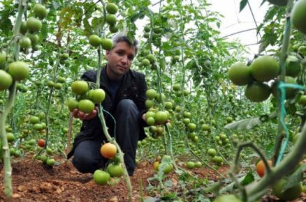 """Erdemli'de """"Güvenli Gıda Projesi"""" Hayata Geçti"""