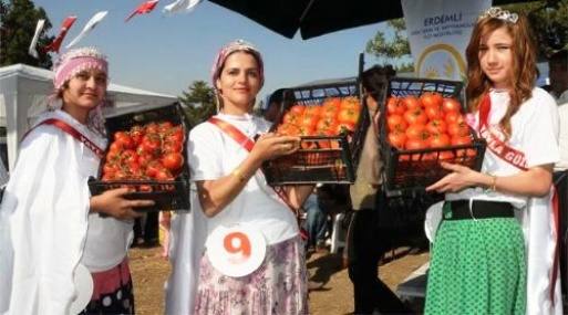 Erdemli'de Yayla Köyleri Festivali