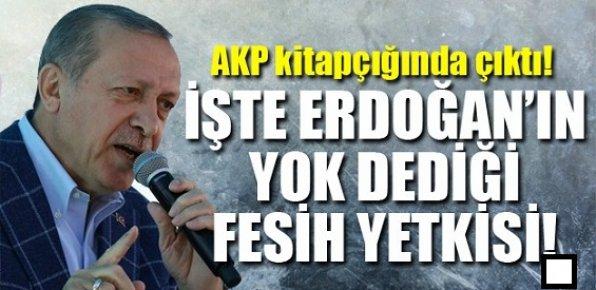 Erdoğan İstifa Edecek mi?