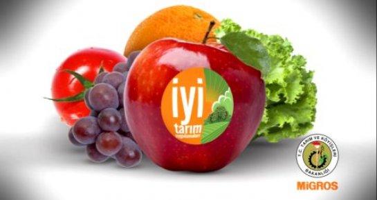 Gülnar'da Çiftçilere İyi Tarım Sertifikası