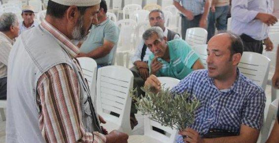 Gülnar'da Zeytin Üreticilerine Bilgilendİrildi.