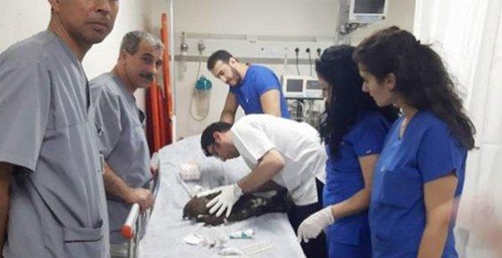Hastane Yönetiminden Skandal Yaklaşım