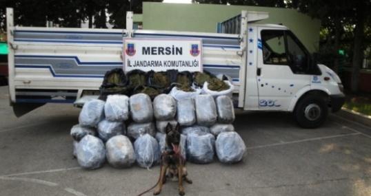 Kamyonetteki 150 Kilo Esrarı Narkotik Köpeği Badi Buldu