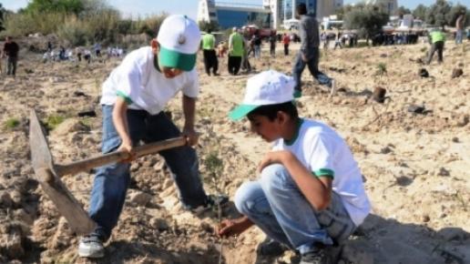 Mersin Üniversitesine 4 Bin Fidan Dikildi