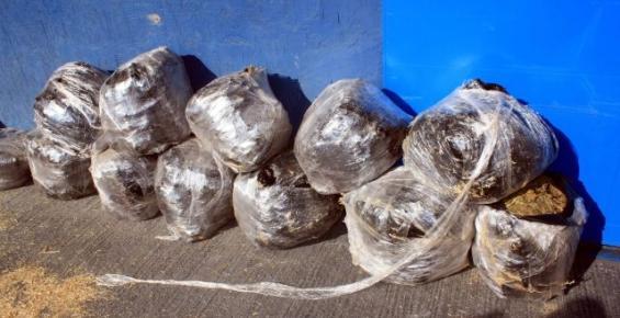 Mersin'de 115 Kilo Uyuşturucu Yakalandı