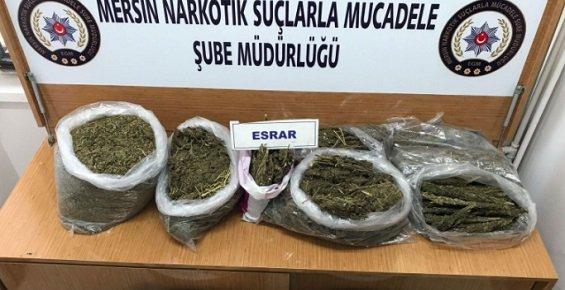 Mersin'de 13.5 Kilo Esrar Ele Geçirildi