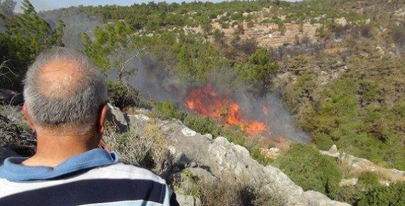 Mersin'de 3 Dönümlük Kızılçam Ormanı Yandı