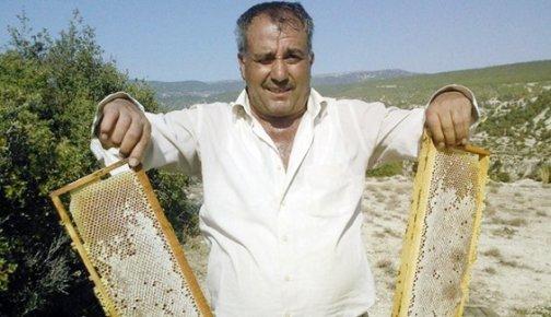 Mersin'de Arıcılar Bu Sene Bal Üretiminde Rekor Bekliyor