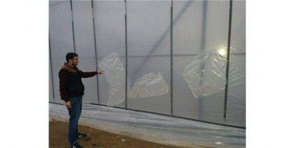 Mersin'de çiftçinin Serasına Çifte Darbe