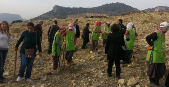 Mersin'de GARD Ormanı Oluşturuldu
