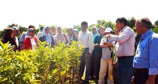 Mersin'de Kadın Çiftçiler Eğitiliyor