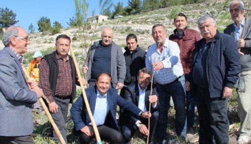 Mersin'de Mali Müşavirler Hatıra Ormanı Oluşturuldu