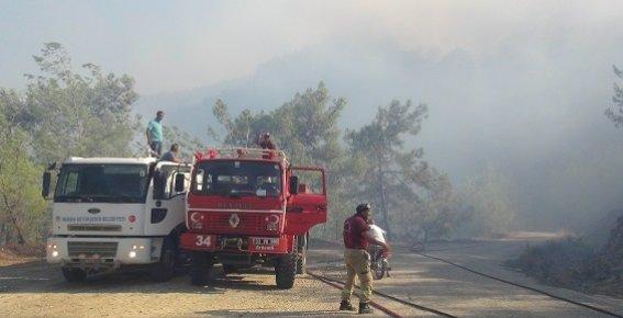 Mersin'de Orman Yangını Korkuttu