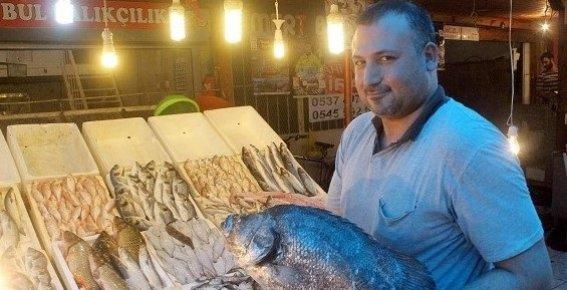 Mersin'de Ramazan'da Balık Ucuzladı.