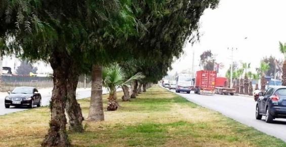 Mersin'in Doğu Girişi Yenileniyor