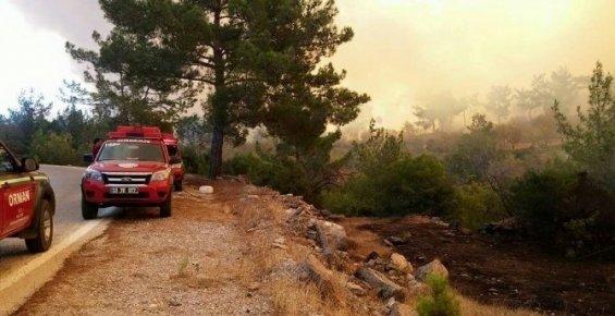 Mersin'in Gülnar İlçesinde Çıkan Yangın Söndürüldü