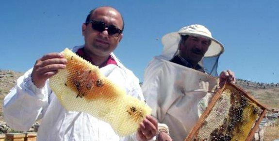 Mersin'in Ödüllü Balı Katar Yolcusu
