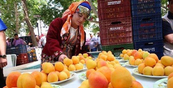 Mut, Karacaoğlan Kayısı Kültür ve Sanat Festivali'ne Hazır