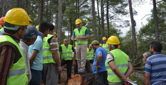 Orman Bölge Müdürlüğü, Aladağ'da 'Üretim Tatbikatı' Yaptı