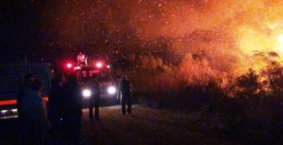Sazlık Alandaki Yangın Korkuttu