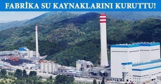 Silifke'deki Çimento Fabrikası Su Kaynaklarını Kuruttu.