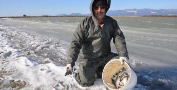 Silifke'de Göksü Deltasında Balıklar Dondu