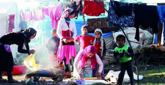 Şu Mersindeki Suriyelileri Gerçek Sayısını Bir Sayamadınız Gitti.
