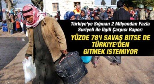 Suriyeliler Türkiye'den Gitmek İstemiyor