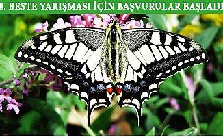 Mersin, Kelebeklerine Ezgi Arıyor