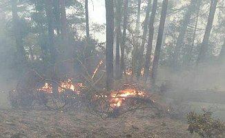 Son Dakika...Mersin'de Çalılık Yangını