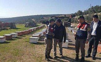 Jandarma Ekipleri Çalınan 722 Arı Kovanını Buldu