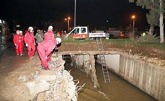Mersin'de Kayıp Köpek Operasyonu