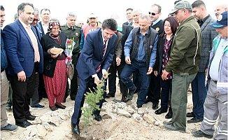 Erdemli'de Şehitler ve Gaziler İçin Hatıra Orman