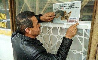 Mersin'de Her Yerde Kayıp Köpeğini Arıyor