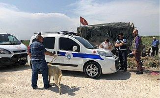 Direğe Bağlanıp Aç Bırakılan Köpekler Kurtarıldı