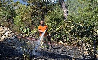 Bozyazı'da Orman Yangını Büyümeden Söndürüldü