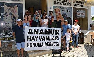 Anamur'da Hayvan Haklarını Tanımayanlara Oy Yok