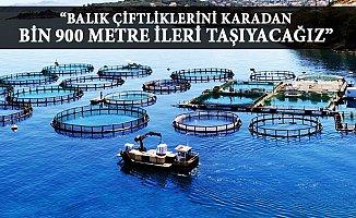 Mersin'de Balık Çiftliği Muamması