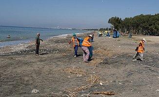 Akdeniz'de Caretta Caretta Yuvalarının Çevresi Temizlendi