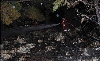 Antalya'da Defineciler Ormanı Yaktı