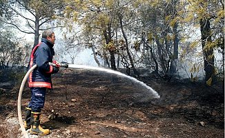 Erdemli'de Orman Yangını