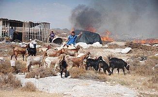 Ev ve Hayvanlarını Yangından Son Anda Kurtardı