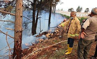 Yıldırım Düşen Ormanda Yangın Çıktı