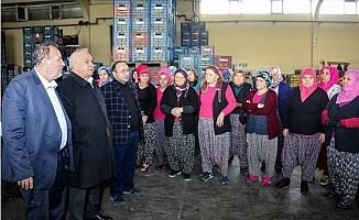 Başkan Tollu Üreticilerle Buluştu
