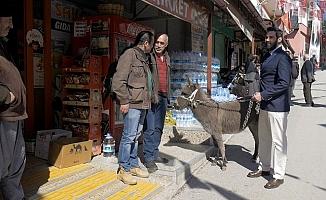 Mersin'de DSP'li Aday Seçime Sıpası İle Hazırlanıyor