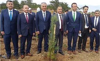 Silifke'de Adalet Ormanı Oluşturuldu
