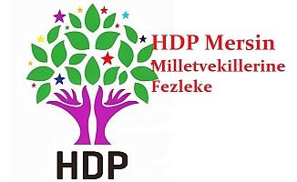HDP Mersin Milletvekillerine Fezleke