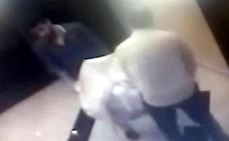 Mersin'de İş Adamını Halıya Sarıp Kaçırdılar Çıplak Fotoğrafını Çekip Para İstediler