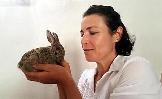 Yılandan Kurtardığı Tavşana Bebeği Gibi Bakıyor