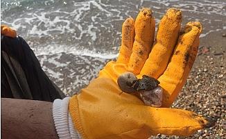 Açık Deniz'den Gelen Tehdit Savcılıkta